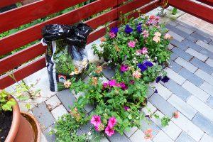 Tavaszi ültetés - otthonbérlet - Budapest, Zugló, Nagy Lajos király útja